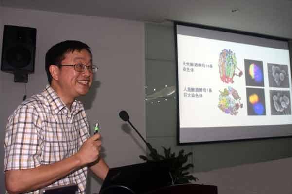 中国科学家首创人造单染色体真核细胞