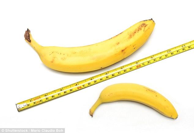 研究:大部分男性阴茎勃起增加不足4厘米