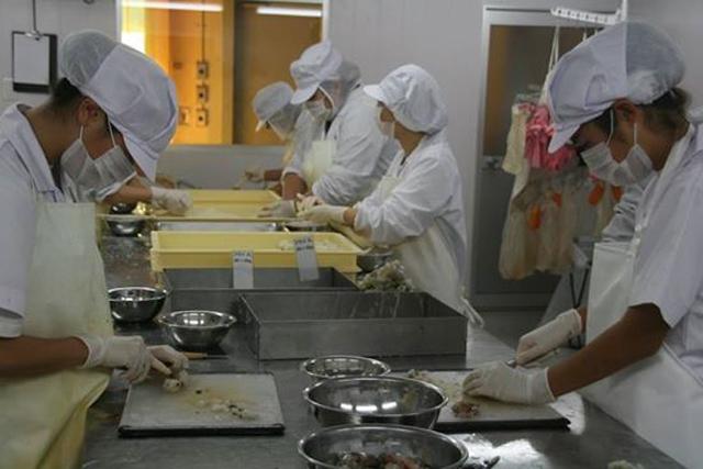 """日本一海鲜厂员工""""佛系""""工作 上班时间自行决定"""