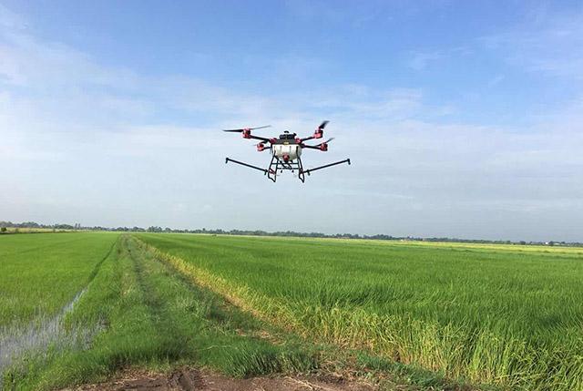 泰国利用无人机喷洒农药成本低效率高