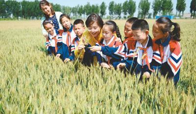 食物浪费惊人 中国食物浪费量每年1700万至1800万吨