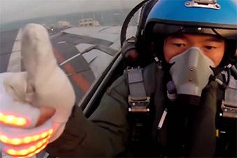 歼15夜间航母起降画面曝光 飞行员戴发光手套