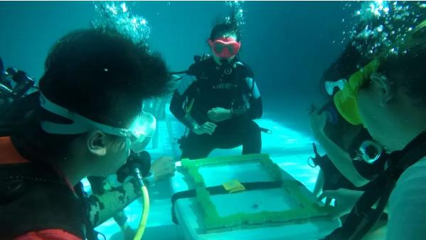 消暑玩出新花样,杭州人水下6米打麻将!教练:不会游泳也可以玩