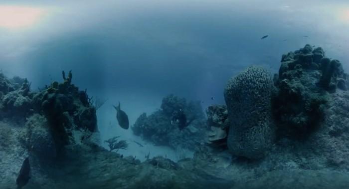 水下300米拍全景8K视频 VR相机让你看清海底世界