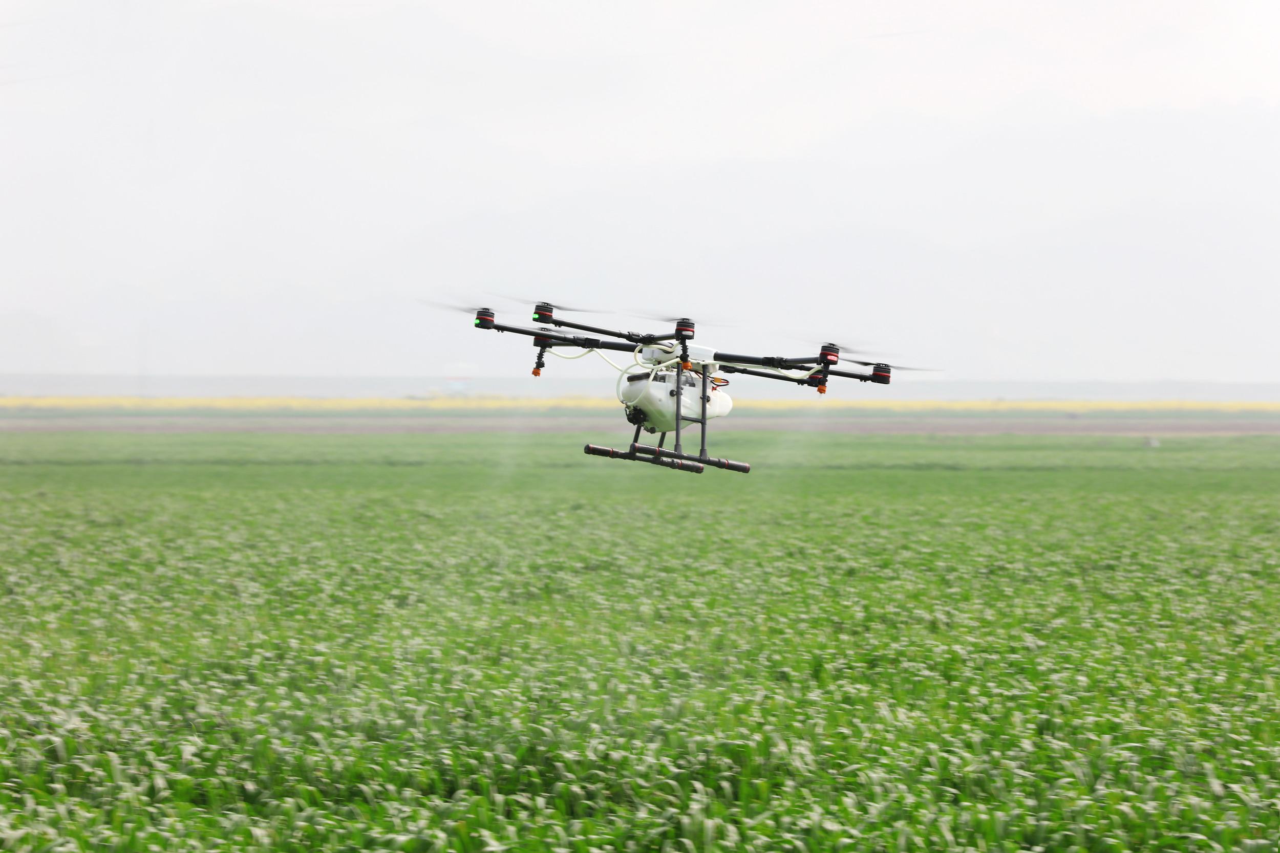 无人机喷洒纳米硒提高优质稻生产效率