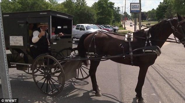 共享经济玩出新花样 美国出现共享马车服务