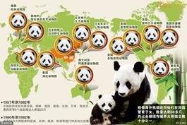 激荡四十年 · 熊猫外交