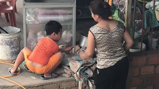 赤子之心!越南小男孩哭喊阻止女子宰杀鸭子