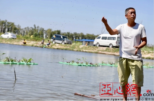 乌市羊毛工镇村民发展鱼菜共生养殖