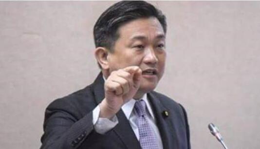 """""""绿委""""王定宇上节目批大陆水贵 遭金"""