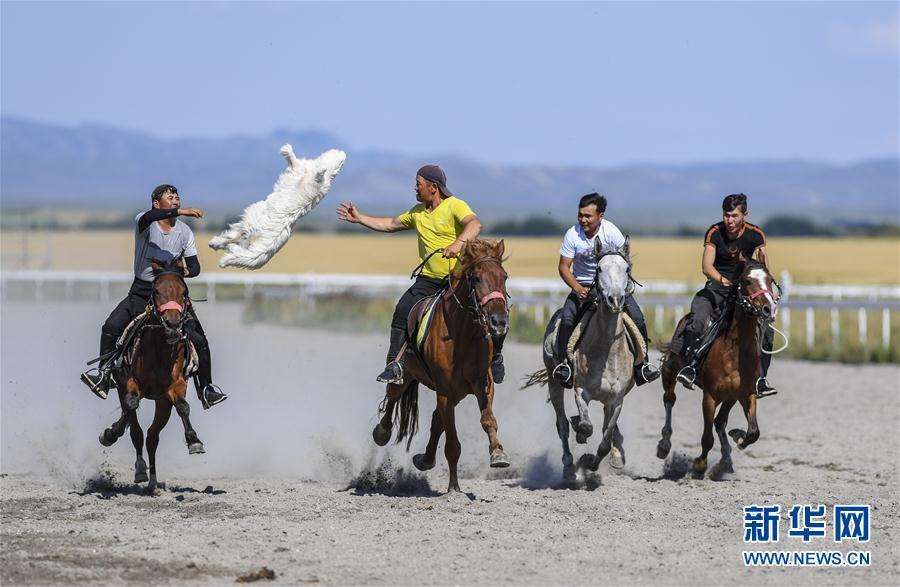 大美新疆 快乐之旅