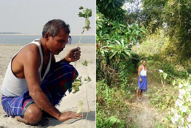印男子39年如一日潜心种树 将荒漠变成森林
