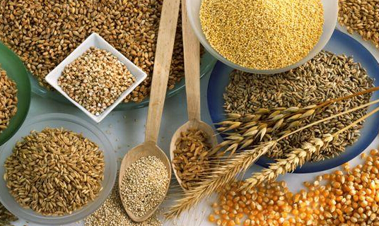 三大粮食作物制种纳入中央财政农业保险保险费补贴目录