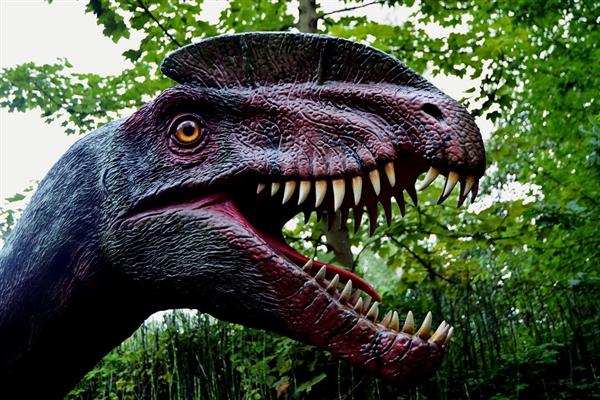 贵州茅台镇发现大规模侏罗纪早期蜥脚类足迹群