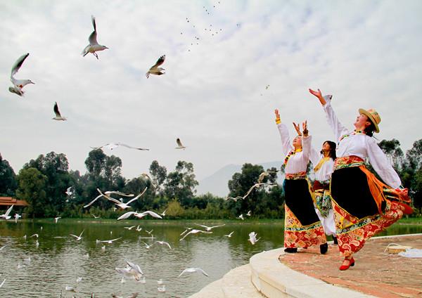 云南民族村特色村寨:藏族村