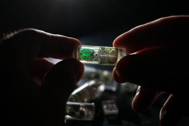 MIT研制高科技药丸 吞服后可检测肠道出血