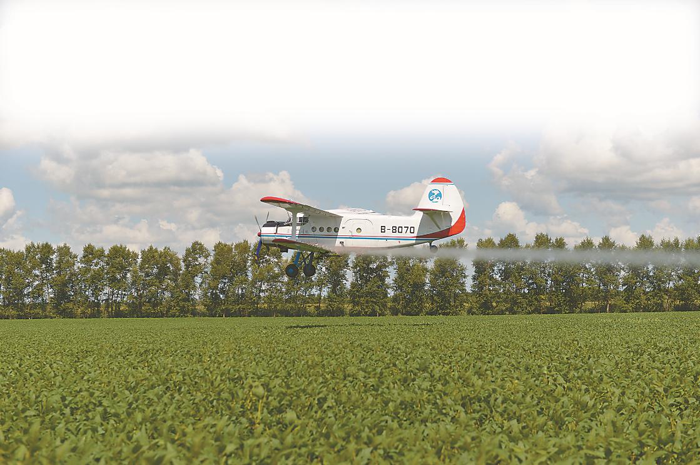 在黑龙江看中国大豆潜力:部分地区亩产量在接近美国