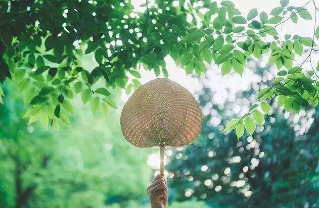 长春市入选国内长线避暑游最热门目的地