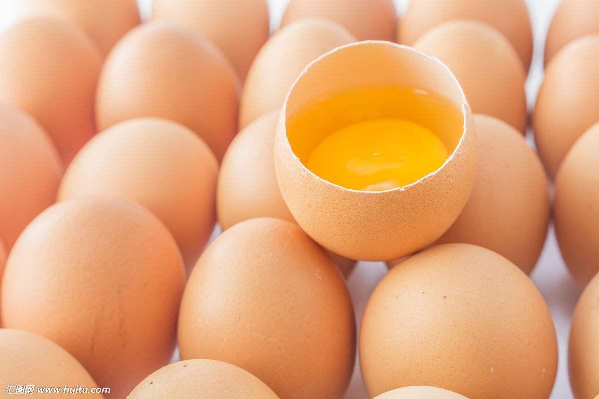 """蛋价上涨系有大资金在""""炒"""""""