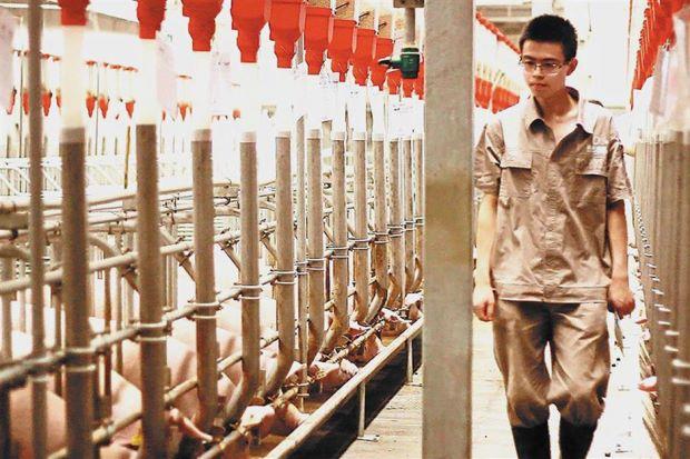 外媒:人工智能技术正在催生智能农业