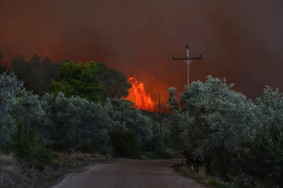希腊埃维亚岛严峻火情致500人被迫疏散
