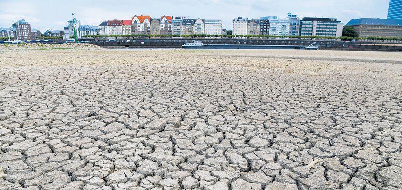 德国高温造成经济损失达11亿欧元 农业部拒绝紧急救助