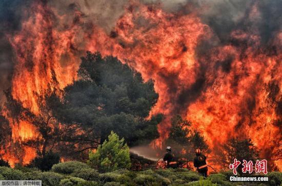 希腊埃维亚岛大火16小时未能扑灭 约500位居民疏散