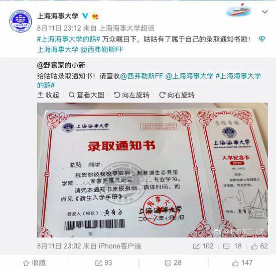 """中国这所大学""""录取""""了一只鹅 网友:入学手续办了吗"""