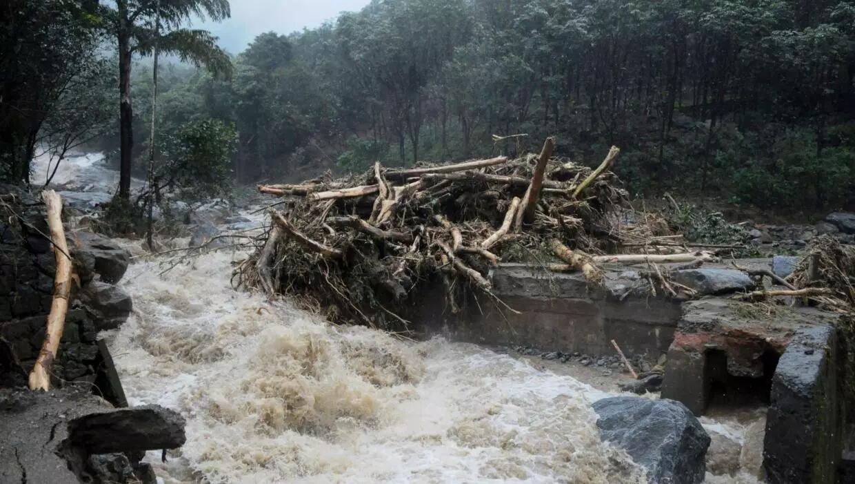印度南部喀拉拉邦遭百年一遇洪灾 一个月内近40人死亡