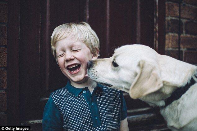 养宠物有益身心健康 有助于提升运动量与幸福感