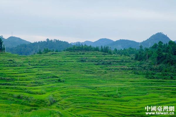 贵州沿途风景