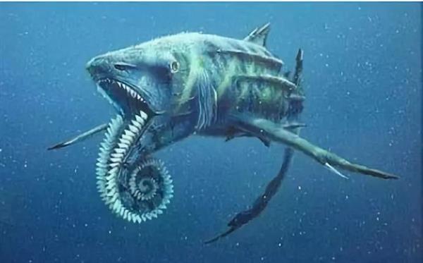 它的牙齿像是一个齿轮,科学家推测它可能主要吃鱿鱼之类的软体动物.