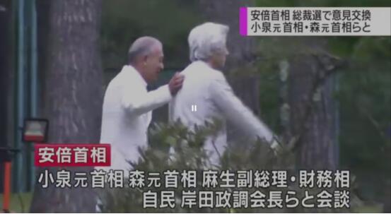 休假也没闲着!安倍与小泉及森喜朗别墅餐叙商讨9月党总裁选举
