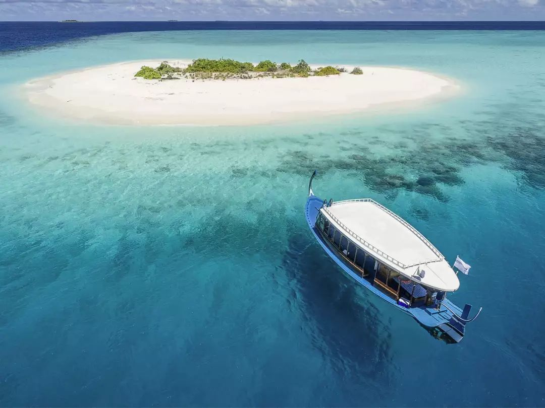 水屋和沙屋,还为马尔代夫特别设计了隐秘的丛林帐篷别墅,让你在海岛上
