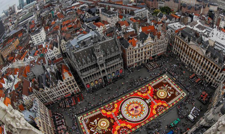 比利时展出1800平方米鲜花地毯 超50万朵鲜花打造