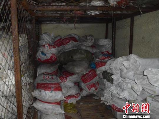 团伙售野生动物制品涉案6000万 5000余马鹿鞭被查