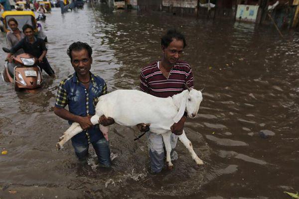 印度克勒拉省洪灾致164人死亡 逾15万人无家可归
