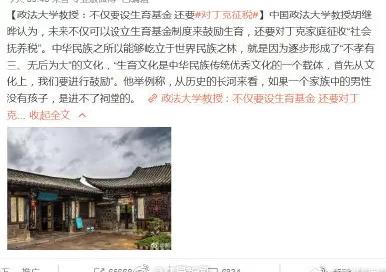 """中国政法大学教授回应""""丁克征税"""":之前观点被误读"""