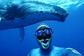 潜水员汤加海岸与座头鲸水下共舞合照
