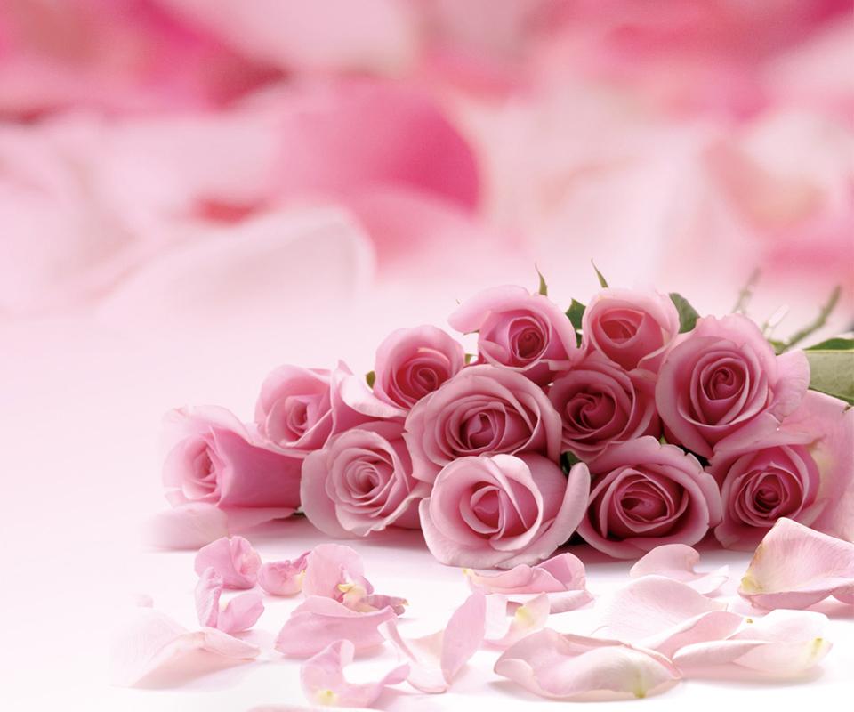 七夕玫瑰未到 退款不见踪影