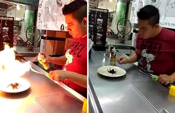 真正黑暗料理!墨西哥一餐厅用狼蛛做卷饼