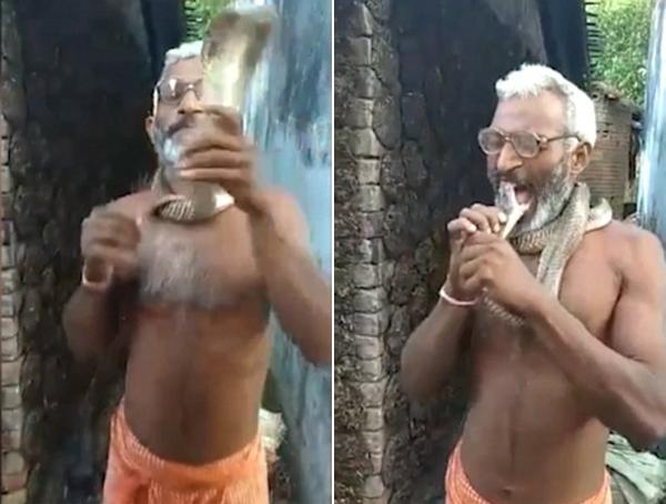 开挂的特技!印男子表演咬蛇头吓呆众人