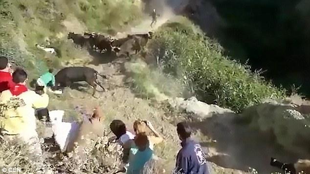 西班牙奔牛节 发狂公牛怒袭观众致多人受伤