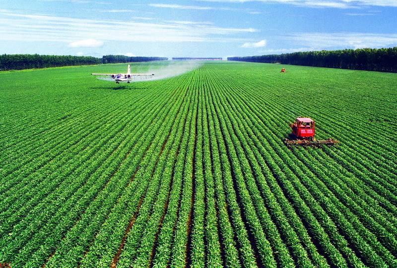 农业农村经济高质量发展开局良好