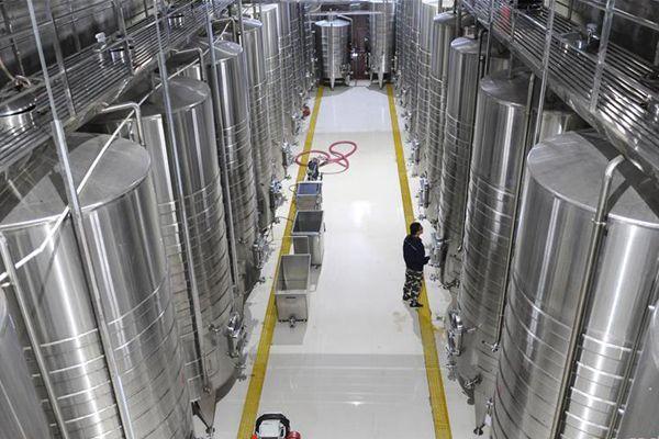 葡萄酒产业富民增收