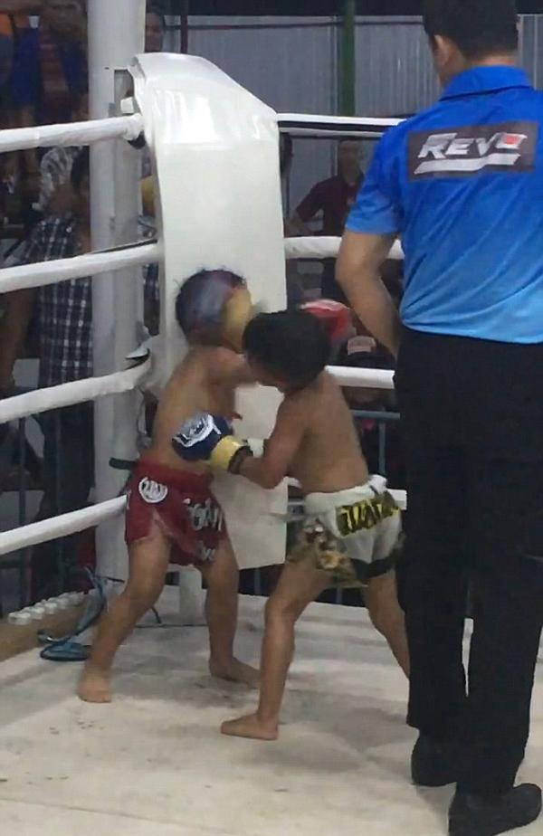 两名5岁男孩泰拳比赛中疯狂拳击对方引热议
