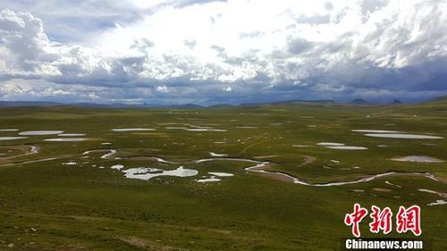 中国西部四大自然保护区启动联合巡护执法专项行动
