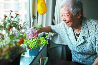 花儿与老年