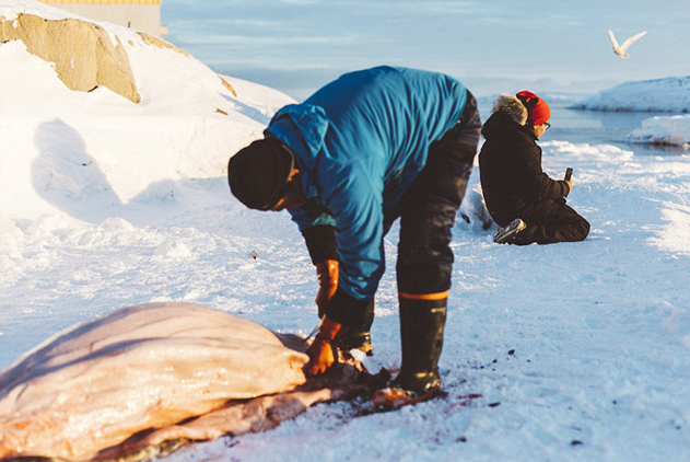 冰天雪地条件恶劣  因纽特渔民捕杀海豹谋生