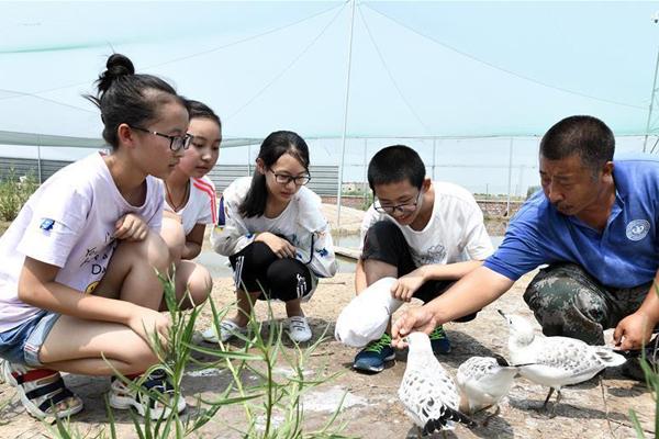 河北乐亭:多彩社会实践丰富暑假生活